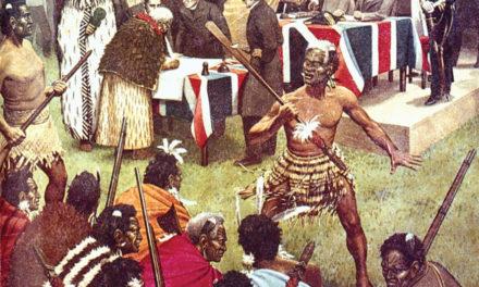 Treaty of Waitangi rights protected in TPPA